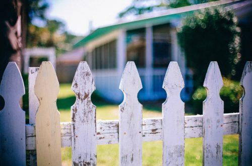 Article : Nos voisins : entre respect et limites